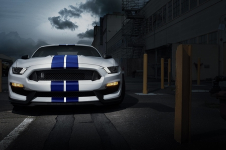 2019 ford mustang shelby gt 350 premium for sale in renton washington